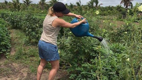 Sarina geeft de gewassen in de tuin water.